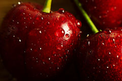 Ripe and sweet cherries Stock Photography