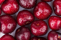 Ripe sweet cherries with water drops Stock Photo