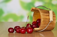 Ripe sweet cherries which dropped out of bucket Stock Photos