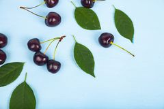 Ripe sweet cherry royalty free stock images