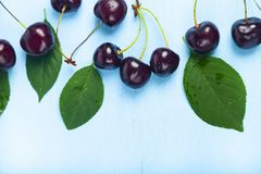 Ripe sweet cherry stock image