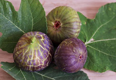 Ripe and sweet figs Stock Photography