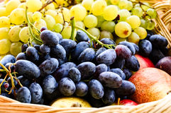 Ripe sweet grapes, pears, plums in basket Stock Photo