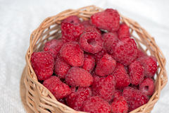 Ripe sweet raspberries in small wicker basket. Close up Royalty Free Stock Image