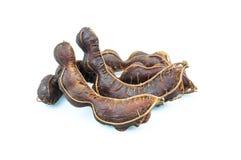Ripe sweet tamarind Stock Image