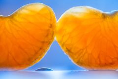 Ripe sweet tangerine cloves. Two orange segment on blue background royalty free stock photos
