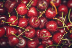 Ripe sweet tasty cherry as background. Royalty Free Stock Photo