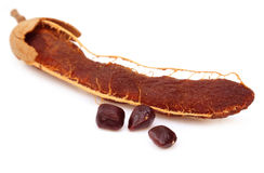 Ripe tamarind with seeds Stock Photography