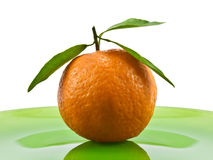 Ripe tangerine Stock Photography