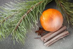 Tangerine and cinnamon. Ripe tangerine and cinnamon in the snow Royalty Free Stock Image