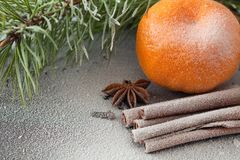 Tangerine and cinnamon. Ripe tangerine and cinnamon in the snow Royalty Free Stock Photo