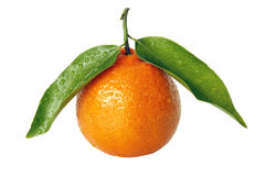 Ripe tangerine with green leaves Stock Photo