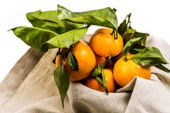 Ripe pile of tangerines on the linen table cloth Stock Photos