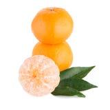 Ripe tangerine or mandarin Stock Photos