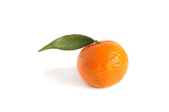 Ripe tangerine Royalty Free Stock Photos