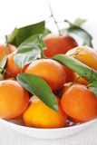 Ripe Tangerines Stock Photography