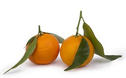 Ripe tangerines Royalty Free Stock Photo