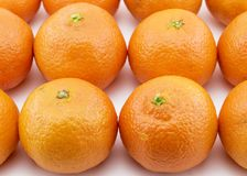 Ripe tangerines arranged in rows Royalty Free Stock Image