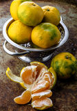 Ripe tangerines in bowl Stock Photography