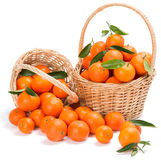 Ripe tangerines with green leaves in a two basket Stock Image
