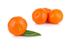Ripe tangerines with leaves Royalty Free Stock Image