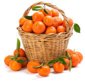Ripe tangerines with leaves in a basket Royalty Free Stock Photos