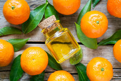 Ripe tangerines with leaves and bottle of essential citrus oil Stock Photos