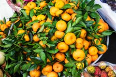 ripe tangerines royalty free stock image