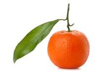 A ripe tangeringe Stock Photo