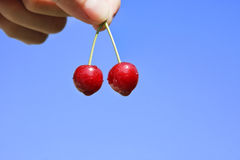 Ripe tasty cherry Royalty Free Stock Photos