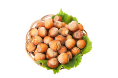 Ripe,tasty hazelnuts on a white. Stock Photo