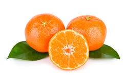 Ripe tasty mandarin Royalty Free Stock Image