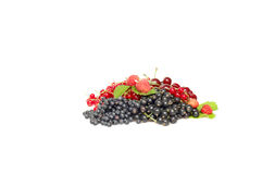 Ripe,tasty mixed berries on a white. Royalty Free Stock Image