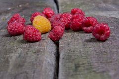 Ripe tasty raspberries Royalty Free Stock Photos