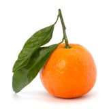 Ripe tasty tangerine Royalty Free Stock Photos