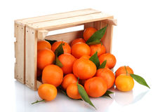 Ripe tasty tangerines with leaves in wooden box Stock Photography