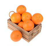 Ripe tasty tangerines Stock Image