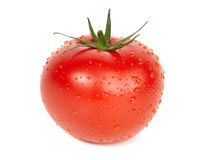 Ripe tomato. Stock Photography