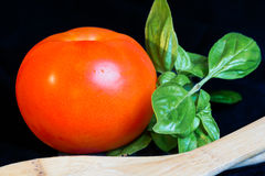 Ripe tomato with basil leaves Royalty Free Stock Photography