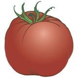 Ripe tomato Royalty Free Stock Image