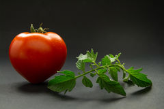 Ripe tomato on a dark background. Ripe and tasty tomatoes in the shape of a heart on a dark background Royalty Free Stock Photos