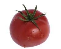 Ripe tomato. Tomato isolated on white background Royalty Free Stock Image