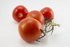 Ripe Tomato isolated on white background. Four red tomatoes on the green line Royalty Free Stock Photography