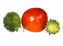 Ripe Tomato with Momordica Royalty Free Stock Photos