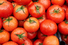 Ripe tomato for sale Stock Photos