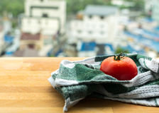 Ripe tomato on wooden board royalty free stock photo
