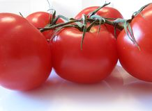 Ripe Tomatoes. Five ripe tomatoes on a vine with a reflection underneath Stock Photos