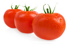 Ripe tomatoes. Close-up photo of tomatoes with water drops Royalty Free Stock Photos