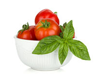 Ripe tomatoes and basil Royalty Free Stock Photos