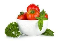 Ripe tomatoes, basil and parsley Stock Image
